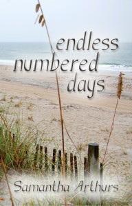 Cover Endless Numbered Days Front Cover